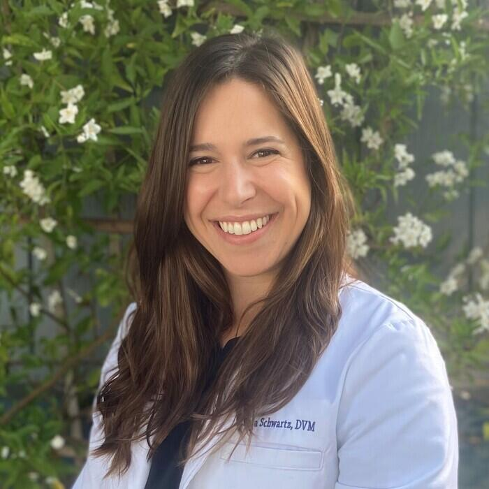 Dr. Laura Schwartz</BR> Veterinarian photo